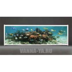 Фотоэкран под ванну Francesca Premium Морские рыбы 150/170/180 см (Антискользящее Основание)
