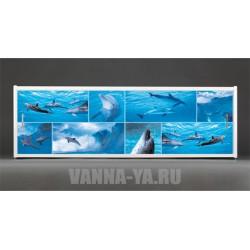 Фотоэкран под ванну Francesca Premium Дельфины 150/170/180 см (Антискользящее Основание)